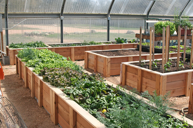 Greenhouse Raised Beds Flickr Photo Sharing