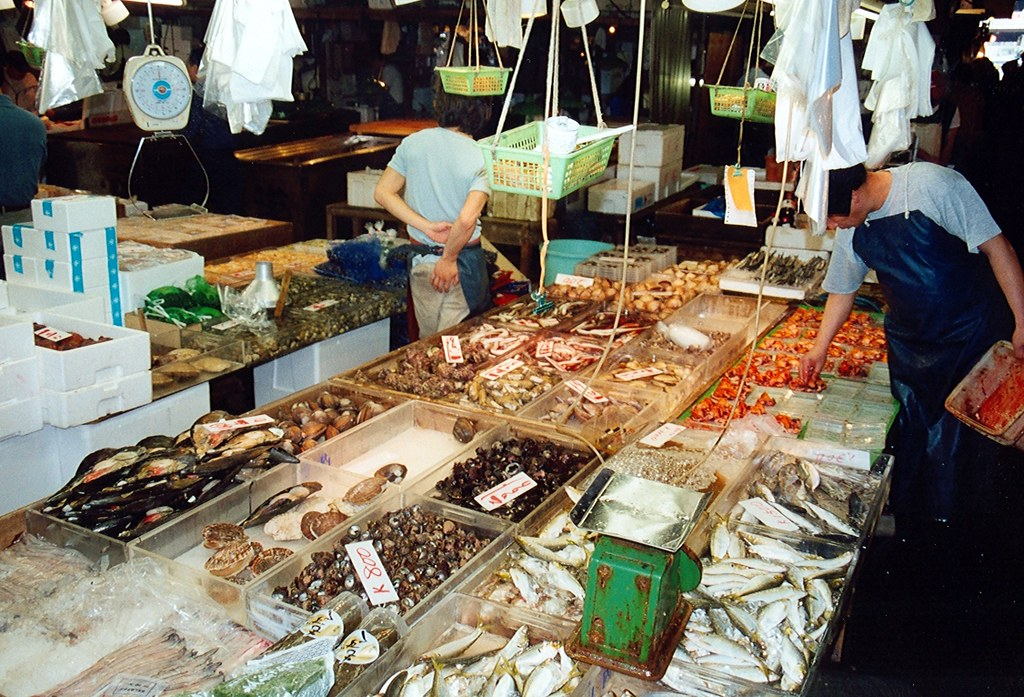 Tokyo tsukiji fish market tokyo tsukiji fish market for Tsukiji fish market japan