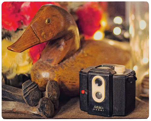 365 Day 297: Camera Porn (Week 2): Ansco Panda with a Wooden Mallard | by ★ 0091436 ★