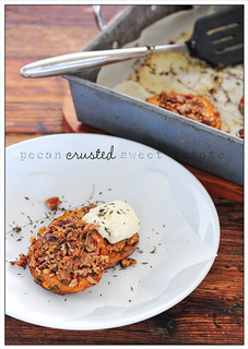 pecan crusted sweet potato | by jules:stonesoup