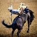 Ride Cowboy Ride, Plate 4
