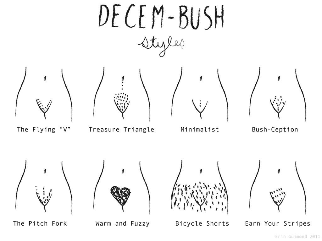 Decem Bush Barryglib Flickr