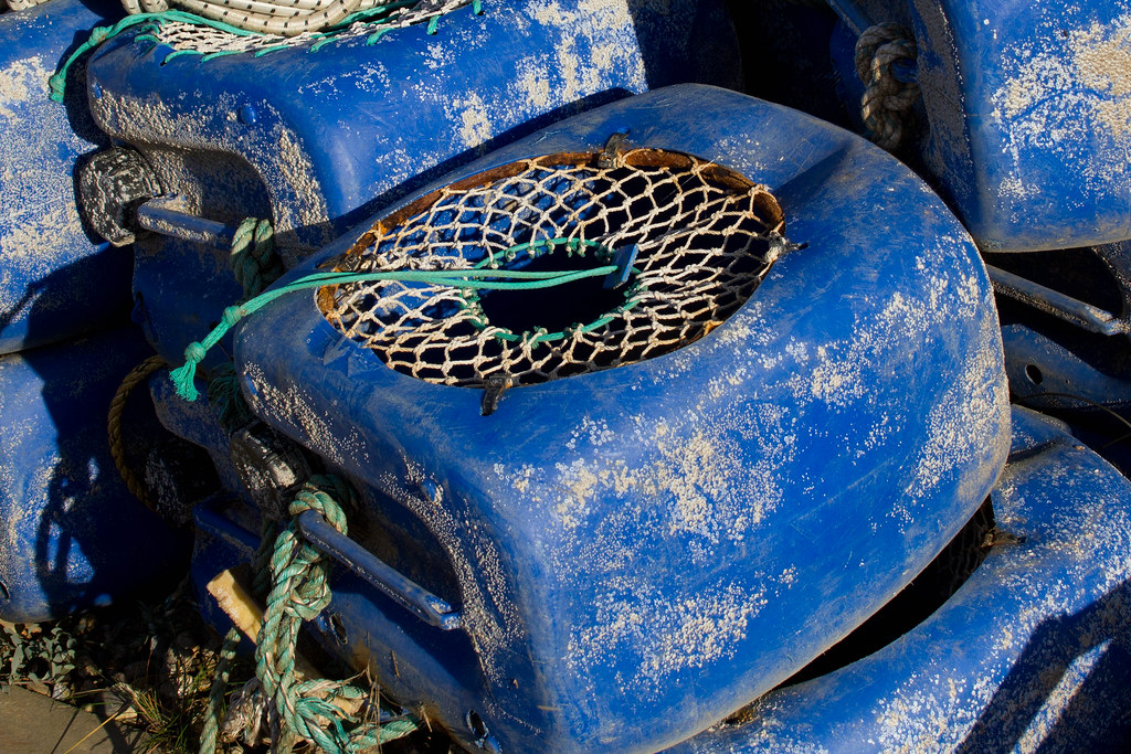 What Is Plastic Made Of >> A new lease of life for plastic containers - crab and lobs… | Flickr