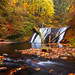 Autumn at Silver Falls State Park