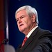 next gingrich explains something
