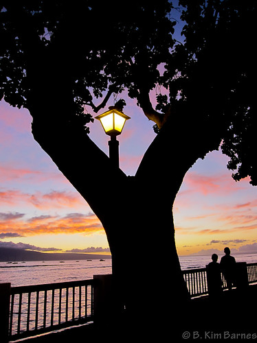 Evening in Lahaina | by kimbar/Thanks for 2.5 million views!