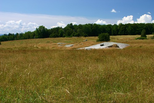 Eagle point unit july 28 2011 old field grasslands on for Vermont fish and wildlife jobs