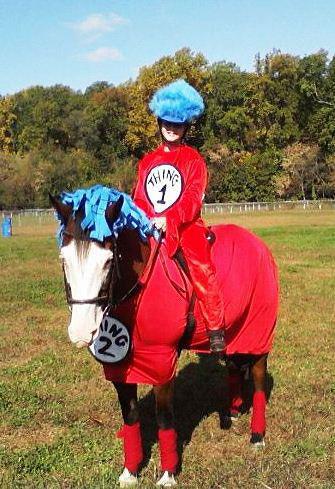 Baby Horse Halloween Costume