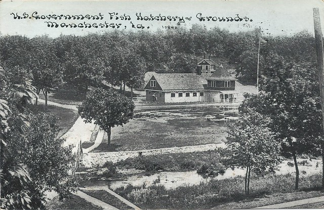 manchester iowa fish hatchery postmarked august 17