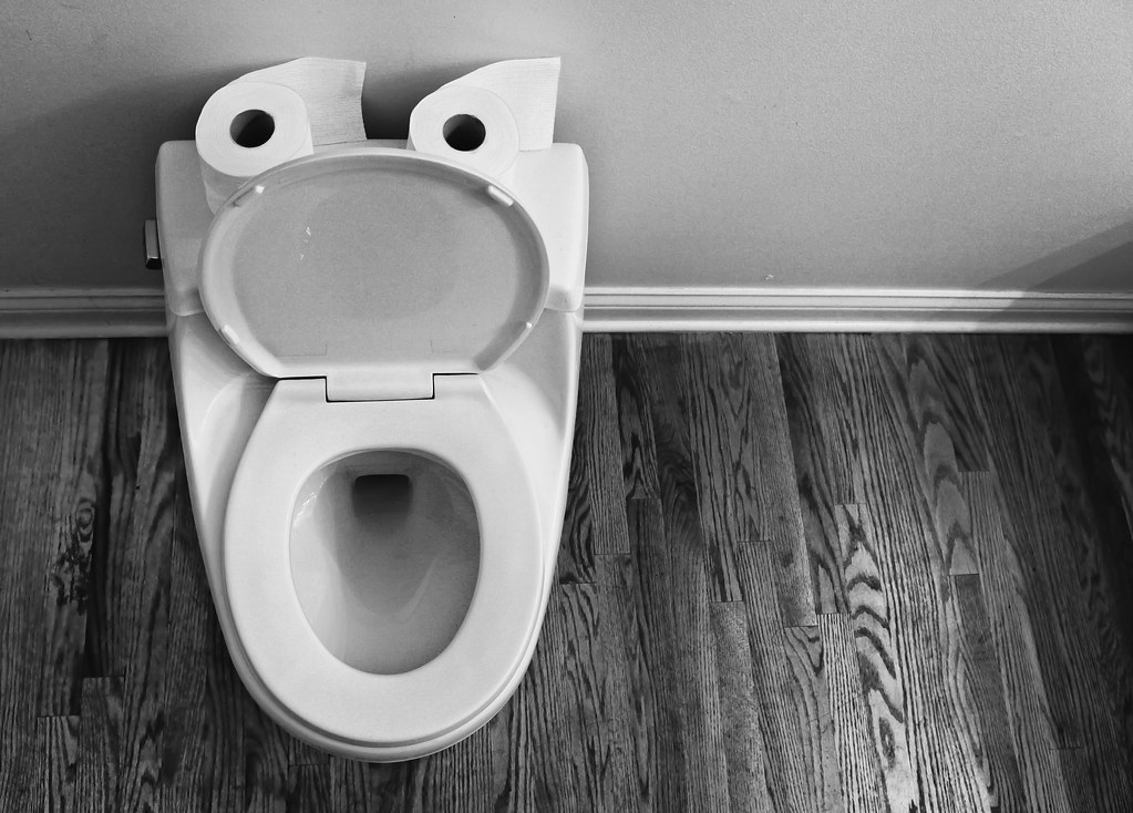 Toilet Face | Saw these today while using our powder room