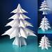 Abete 3 - Fir tree 3