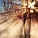 Cold Morning Sun - secret revealed :-)