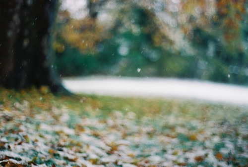 the first snow, falling in silky drifts | by wildorange55