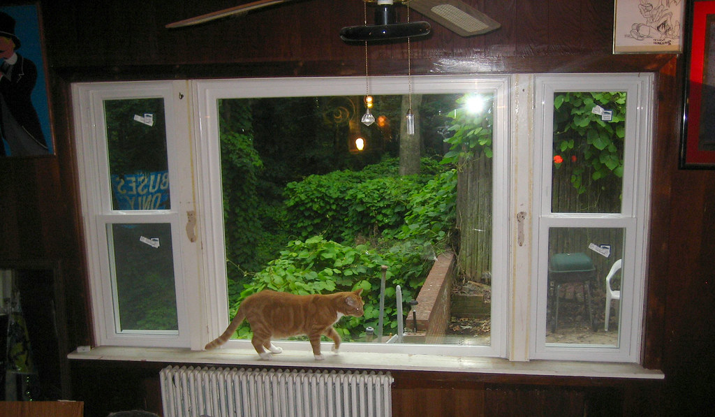Farmers Homeowners Insurance >> window, living room picture window - 41 - replacement - IM… | Flickr