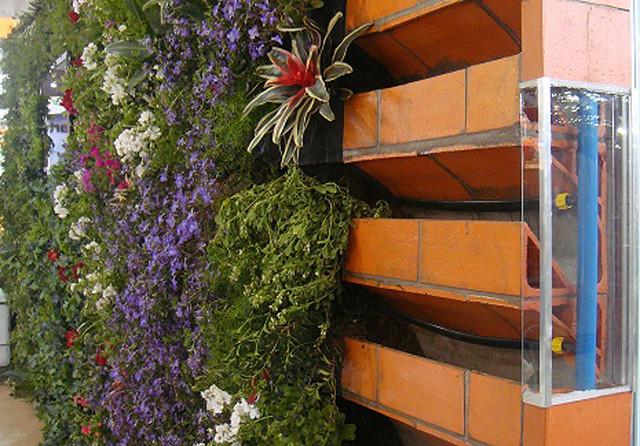 trelica jardim vertical:Arquitetura e Decoração