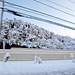 Oct. 29 2011 Snowstorm