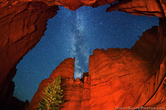 Starry night canopy over Bryce Canyon