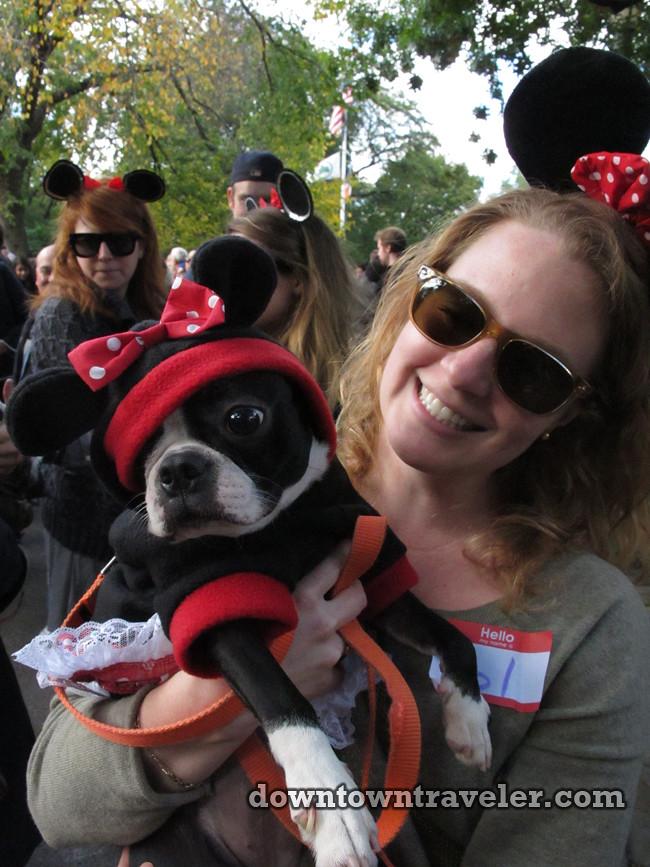 Dog Parade On Republic Day