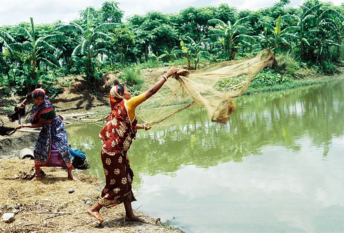 Women in fisheries, Bangladesh. Photo by CBFM-Fem Com Bangladesh, 2006 | by WorldFish