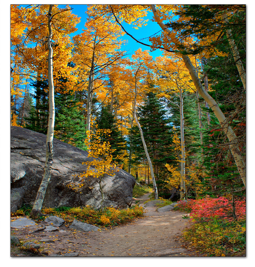 Nice fall day | Taken in the Wild Basin Area of the Rocky ...