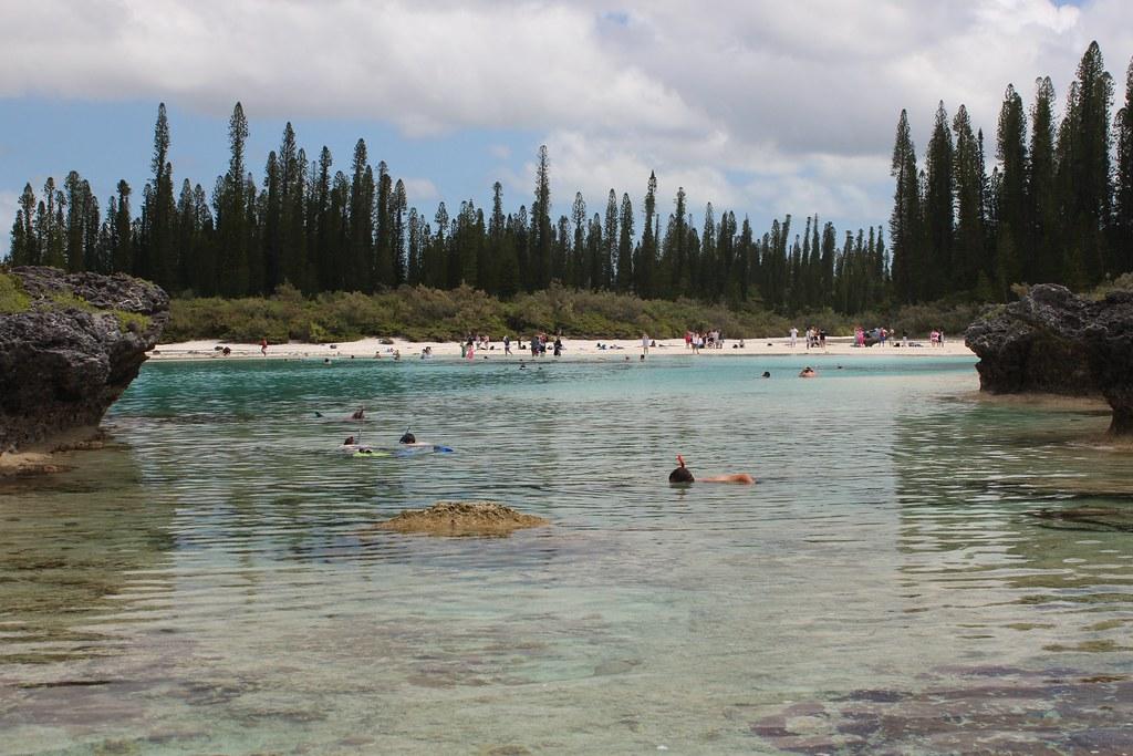 isle of pines new caledonia aquarium img 3292 flickr