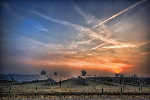 Solar Plantation | by neimon2 (too busy, sorry for my temporary silence)