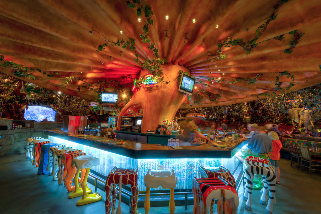 Animal Kingdom Rainforest Cafe Bar Yeah Its A Giant