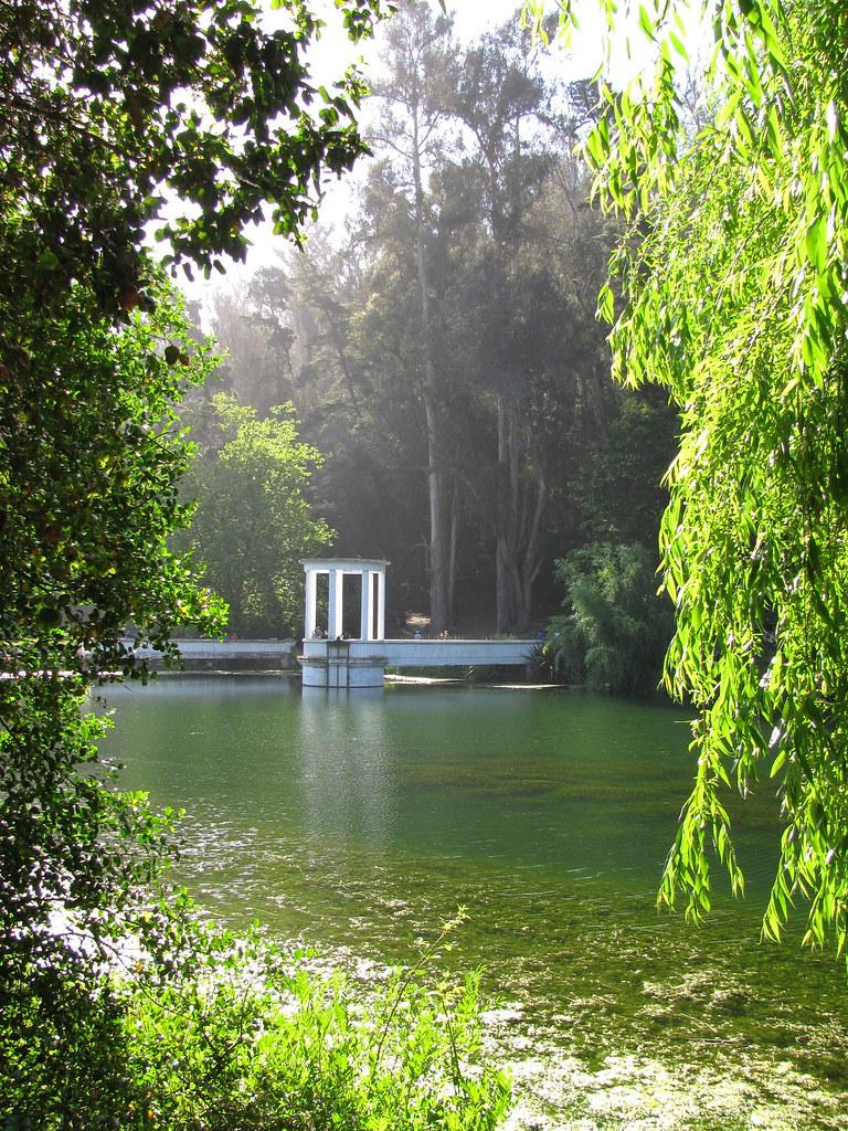Contra luz jard n bot nico de vi a del mar hern n for Jardin botanico vina