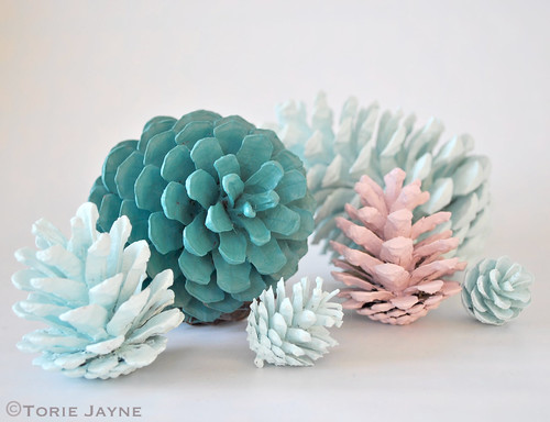 Hand painted pine cones | by toriejayne