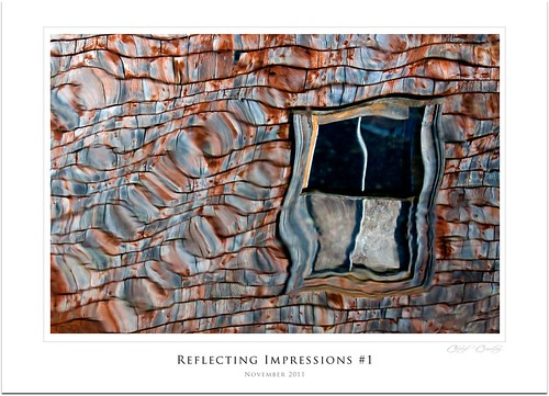Reflecting Impressions | by C's photo-artistry (A Little of This &That)