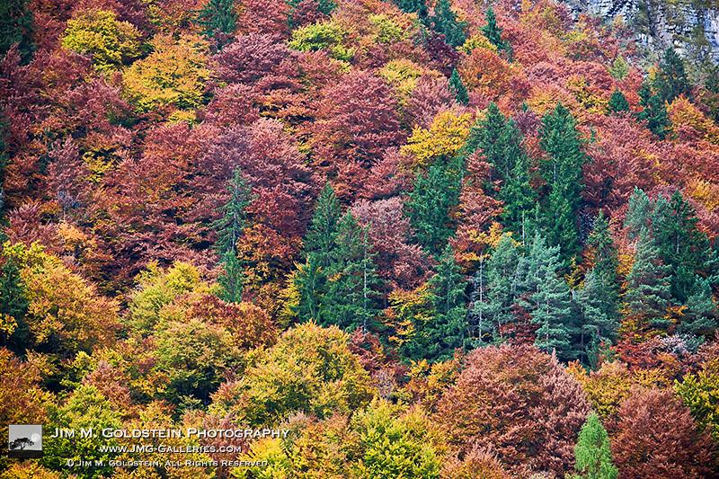 Autumn report