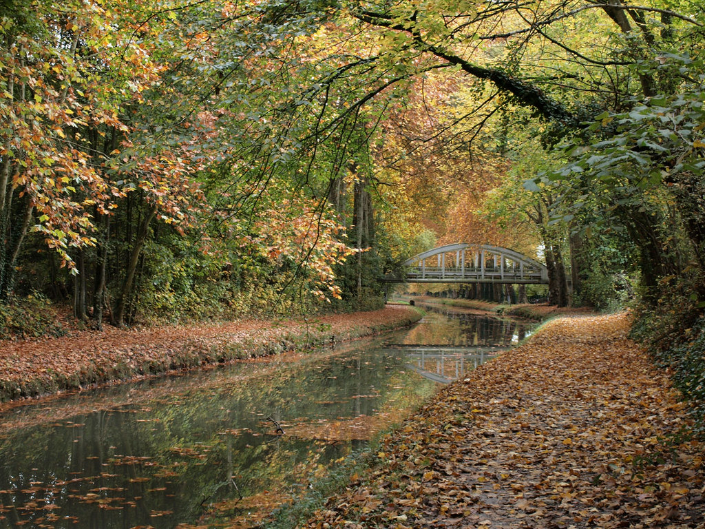 le canal de berry en automne bourges please no invitatio flickr. Black Bedroom Furniture Sets. Home Design Ideas