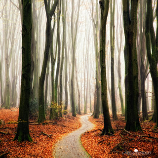 Winter Around the Corner | by larsvandegoor.com