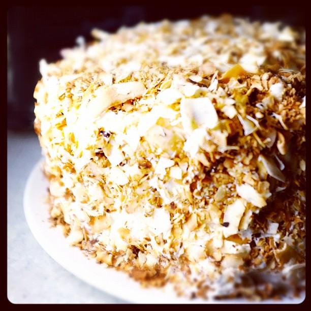 Sponge Cake Covered In Jam And Coconut