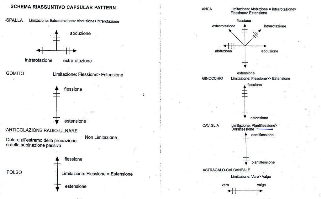 Capsular Pattern ITA Bernisim Flickr Enchanting Capsular Pattern