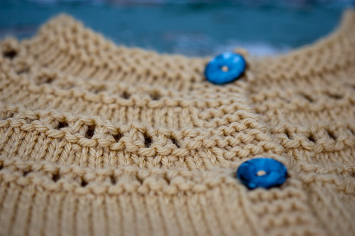Evelyn's Rhinebeck sweater | by bookgrl