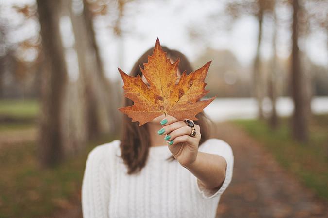 Autumn Leaf Formspring Blog M Klasan Flickr