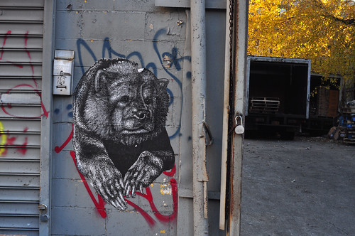 Friendly Neighborhood Bear (Swoon?) | by 9brandon