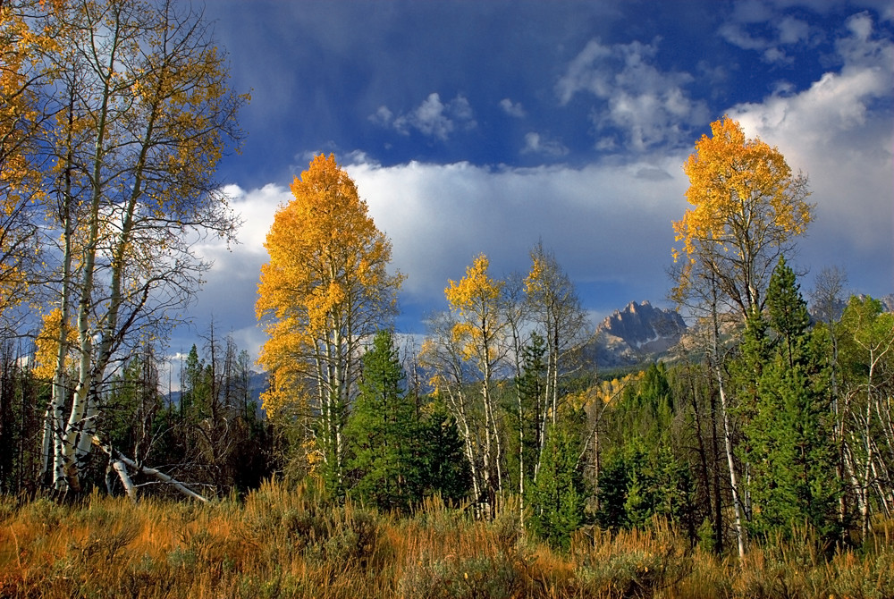 Mount Heyburn Autumn Not Many Think Of The Sawtooths For