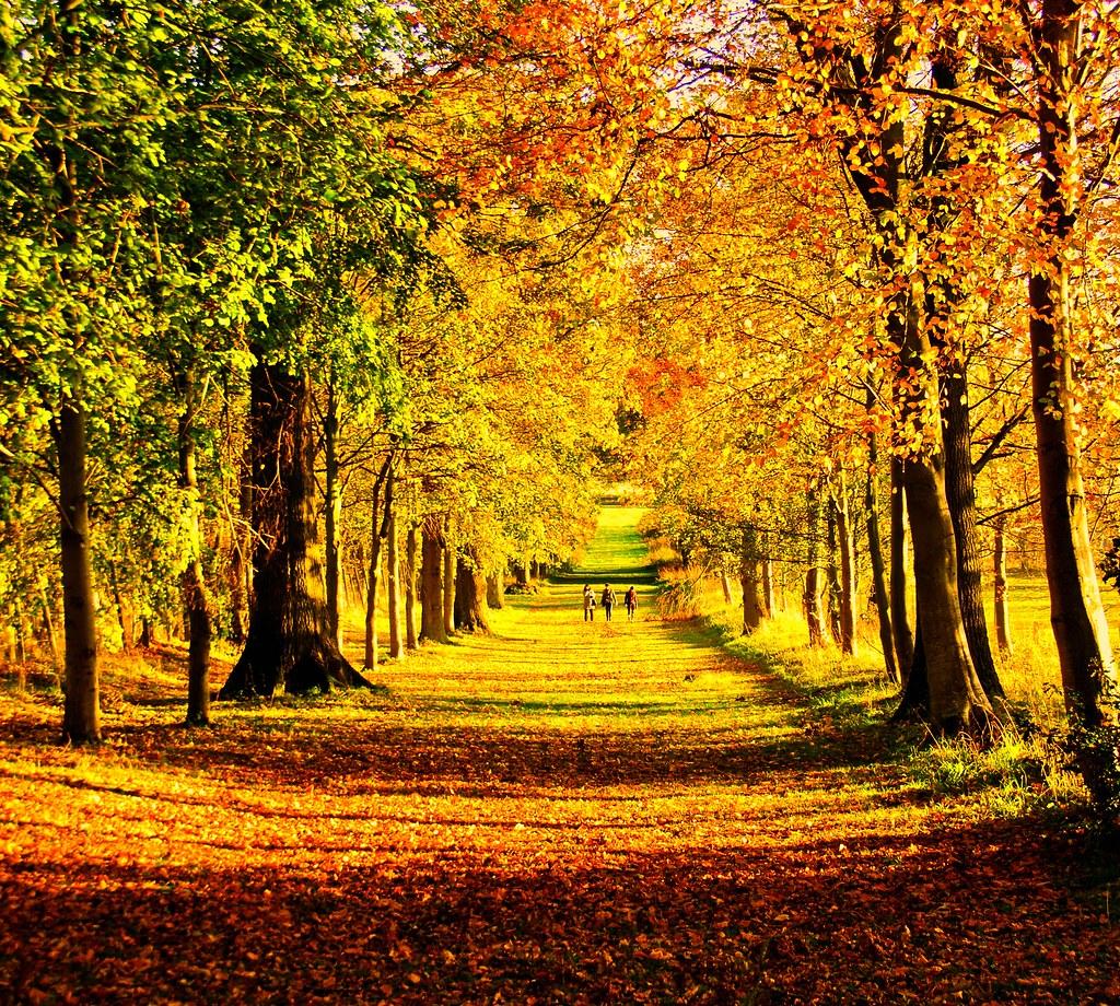Autumn walk | Lennoxlove House near Haddington | neil roger | Flickr