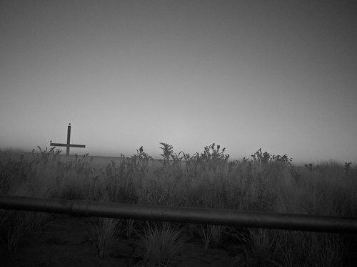 cross | by nosha