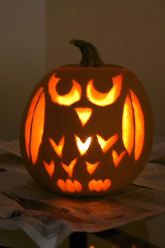 Owl pumpkin flickr White pumpkin carving ideas