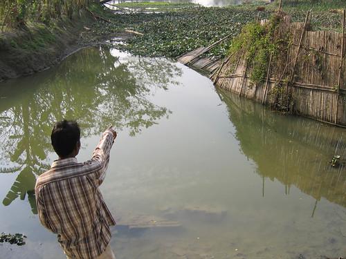 Pond dyke damaged by tidal surge, Bangladesh. Photo by WorldFish, 2008