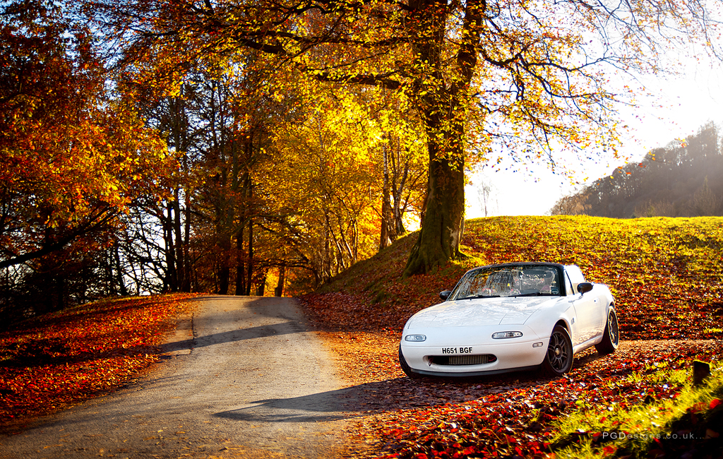 Autumn Driver One From Our Drive Up To The Lake District