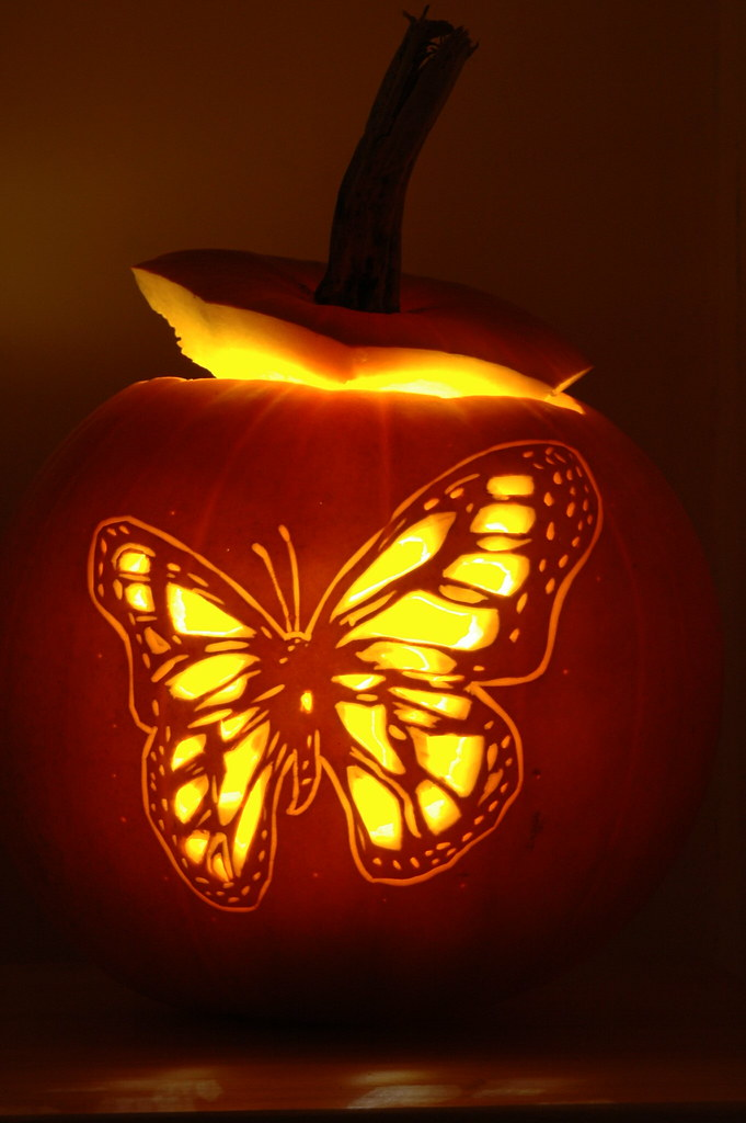 Butterfly pumpkin carving a design carved
