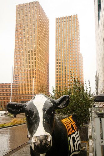 A cow in the Big City | by Ferdi's - World