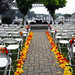 Outdoor Wedding Aisle in Yellow and Red Rose Petals  - Lisa Greene, AAF, AIFD, PFCI