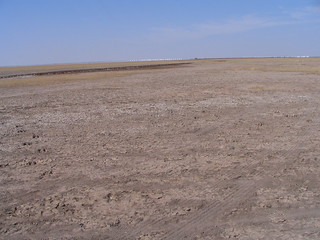 Salt Pans in the Rann | by Freya3377