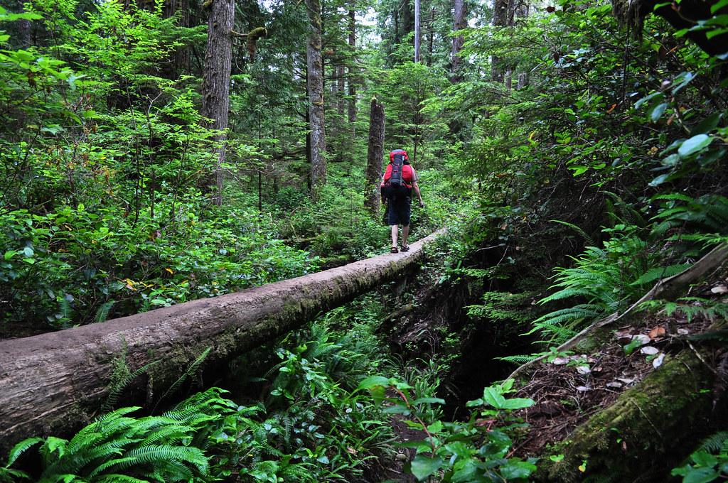 West Coast Trail Vancouver Island Bc Canada