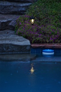 085/366 Pool Light & Rain | by Kristen Koster